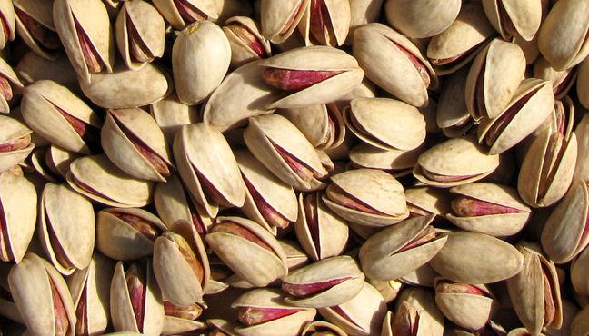 Japanese businessmen keen on export of Zarandiyeh pistachio