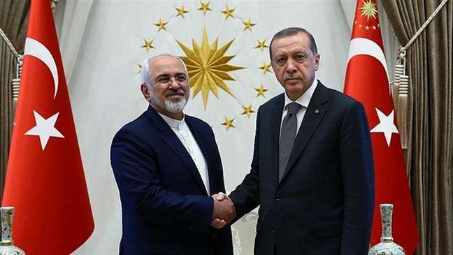 Zarif, Erdogan Discuss Syria Ahead of Astana Talks