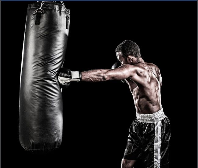 boxing training books free download