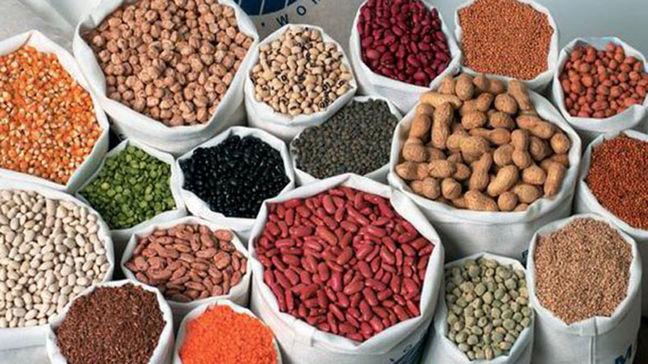 FAO Will Help Improve Iran's Oilseed Production