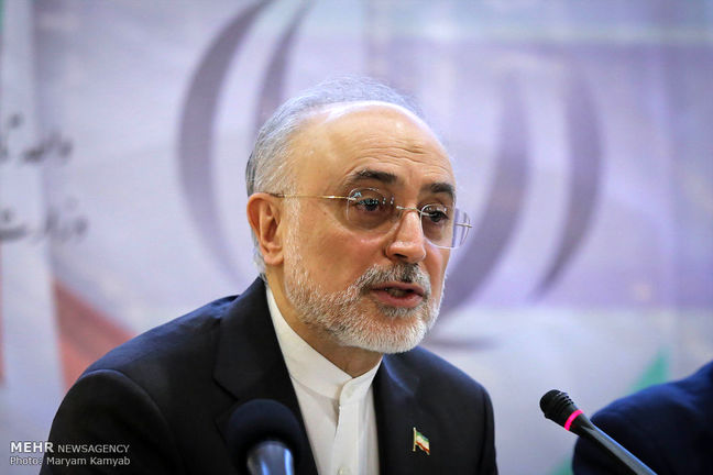Iran builds new centrifuge rotor factory: nuclear chief