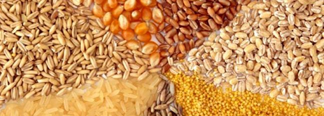 Tehran Hosts Russian Mission for Boosting Grain Trading