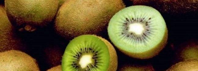 Kiwi Exports Resume