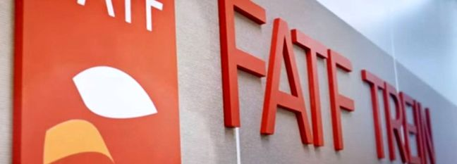 EC Confirms Leader's Approval to Review 2 Remaining FATF Bills