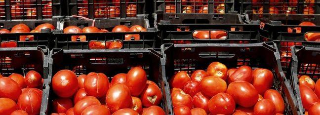 Food Price Changes Reviewed