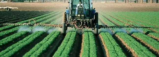 PPI of 'Agronomy, Horticulture' at 11%