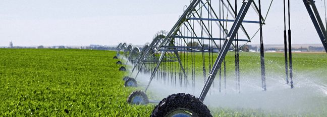 Post-Revolution Track Record of Iranian Agriculture Sector