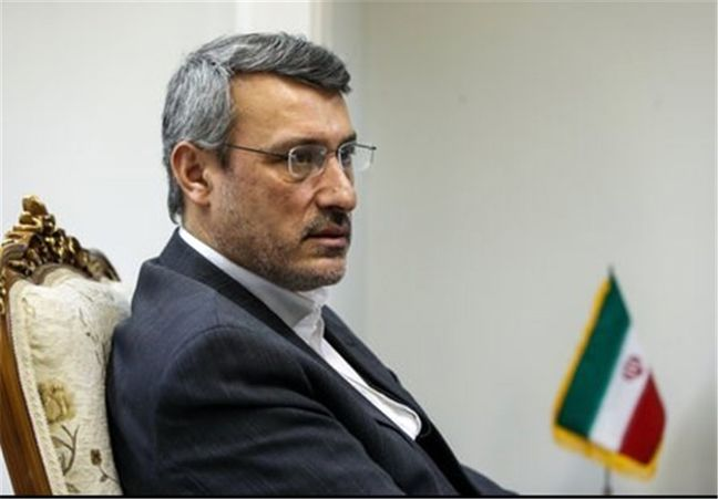 Envoy: FATF decision ensures expansion of Iran banking ties