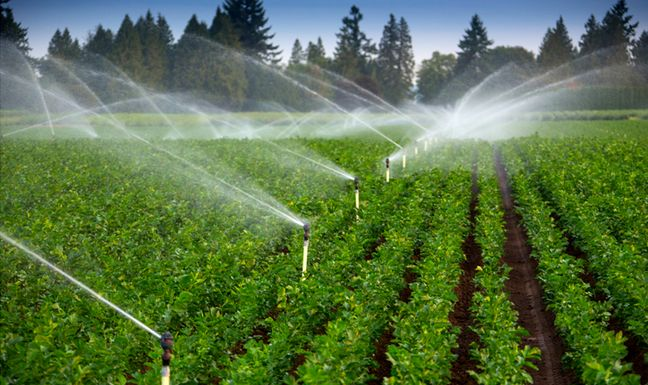 Iran Chamber of Commerce, Agriculture Ministry Sign MoU to Boost Water Productivity