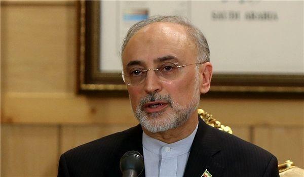 Iran expects IAEA to be unbiased: AEOI head